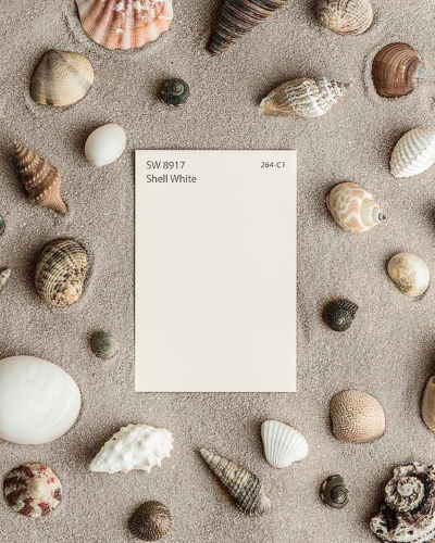 Shell White Paint Color Inspiration