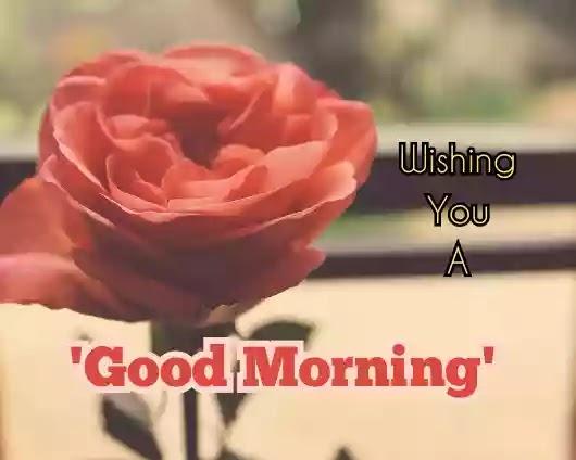 Sunday good morning images