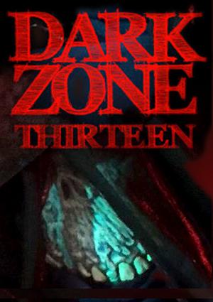 dark zone thirteen