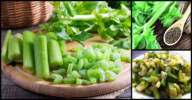 How Nutritious Is Celery?