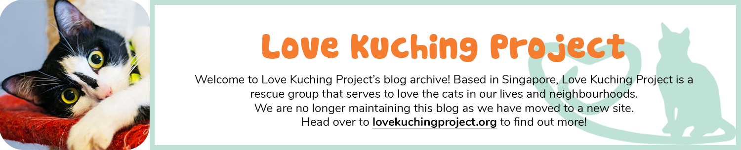 Love Kuching Project @luvkuching - kitten adoption, rescue, TNR