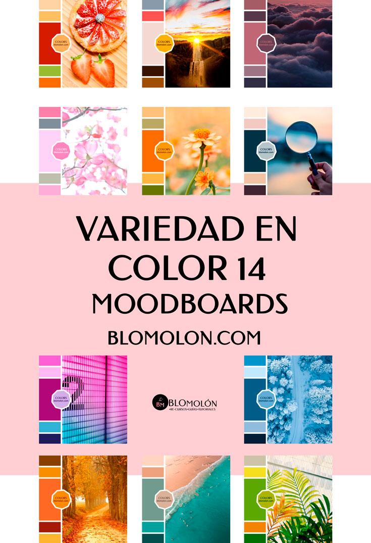 variedad_en_color_blomolon_16