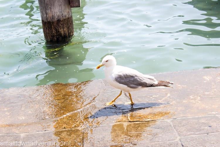 Travelguide Venedig, Lohnt sich Dogenpalast, Venedig Dogenpalast, Venedig Blogger