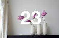 http://www.otchipotchi.com/2018/03/magnolias.html