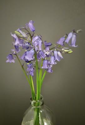 bleuet-fleur-vase-bullelodie