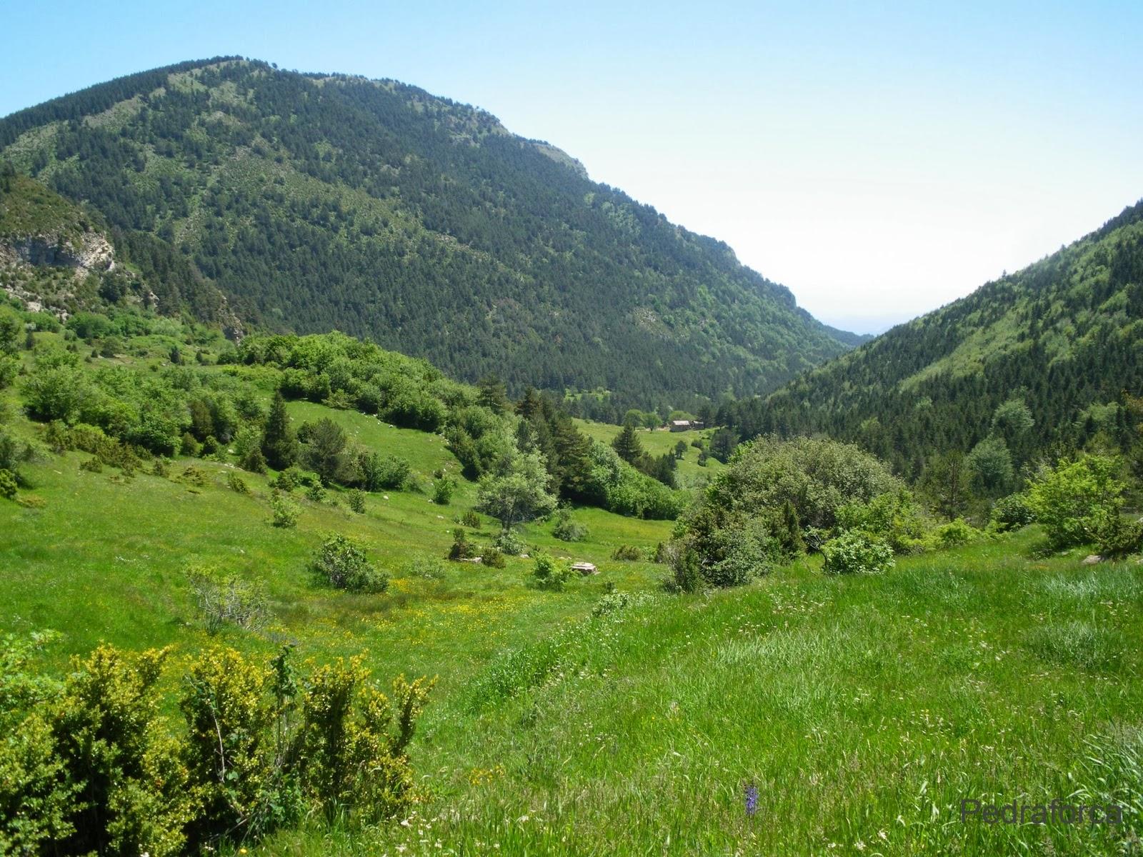 Vall de Peguera Alt Berguedà Serra d'Ensija