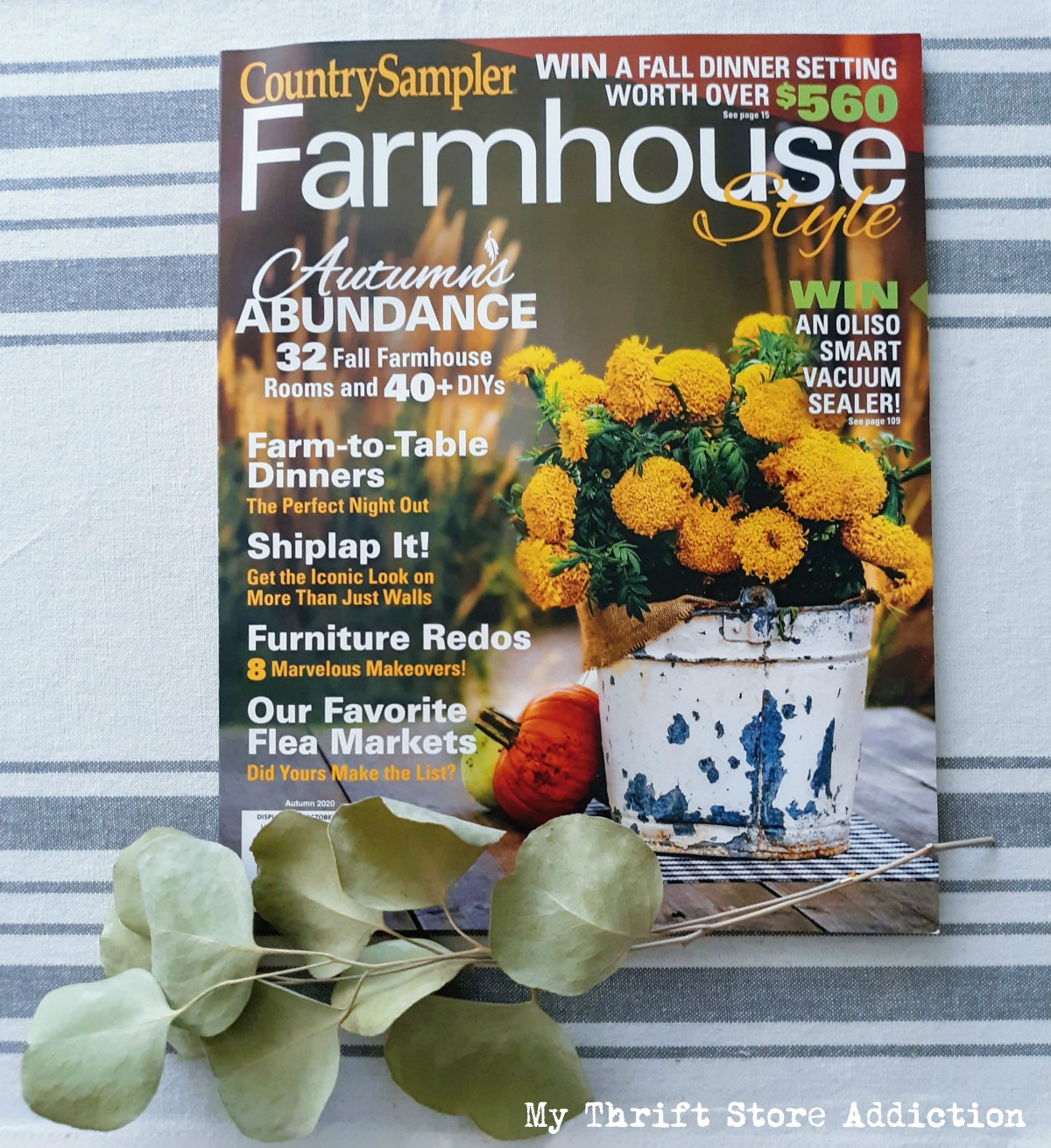 My Thrift Store Addiction Farmhouse Style magazine feature