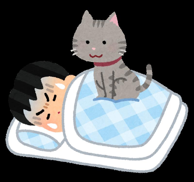 猫 かわいい イラスト