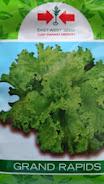 berkebun di rumah, sayuran, usaha sampingan, usaha rumahan, menanam buah, jual benih hibrida, toko pertanian, toko online, lmga agro