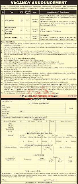 Public Sector Organization Peshawar Jobs 2021 peshawar, Staff Nurse,govt jobs 2020 pes latest jobs kpk, latest jobs in pakistan 2021,latest jobs 2021,jobs in kpk, jobs in kpk 2021, jobs near me,  jobs near me, jobs hiring near me