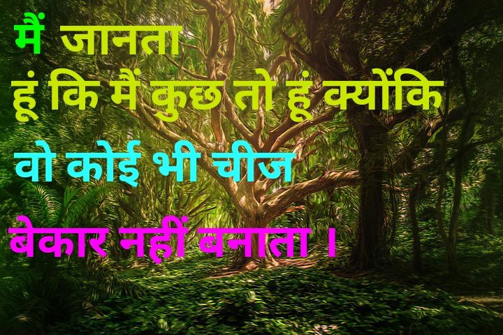 Motivational Quotes In Hindi For Success Thegurugyaan