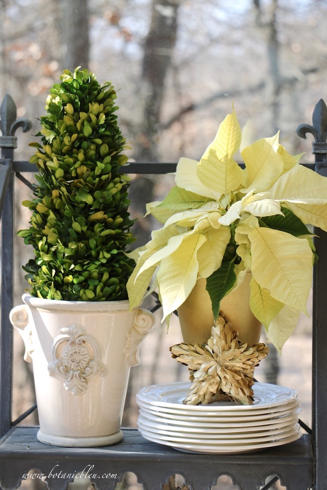 Add Christmas to a French Country plate stand with a white poinsettia