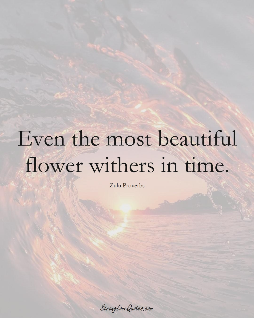 Even the most beautiful flower withers in time. (Zulu Sayings);  #aVarietyofCulturesSayings