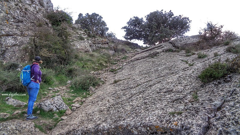 GATHOBOLUMINI
