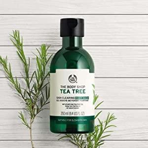 The Body Shop's Tea Tree Skin Clearing Body Wash