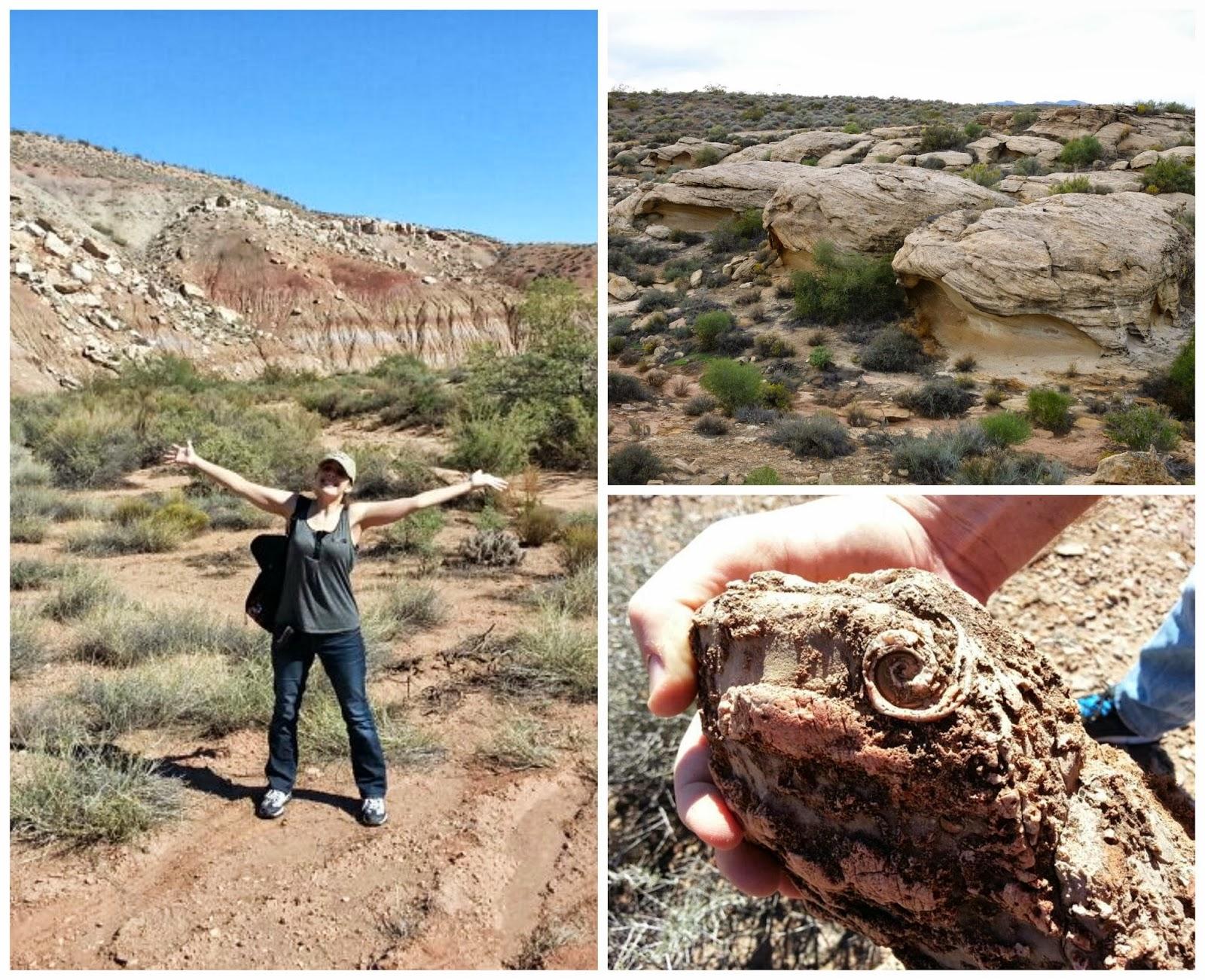187 Treasures From The Desert