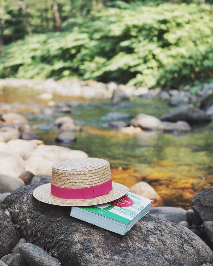 Le shinrin yoku - les bienfaits des bains de forêt