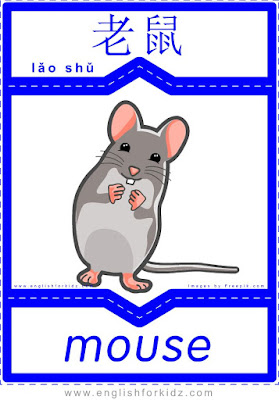 Mouse - English-Chinese flashcards for wild animals topic
