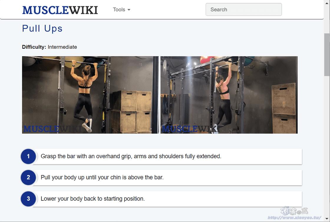 MuscleWiki肌肉訓練示範教學網站