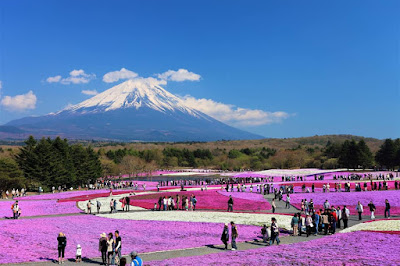 Oishi park