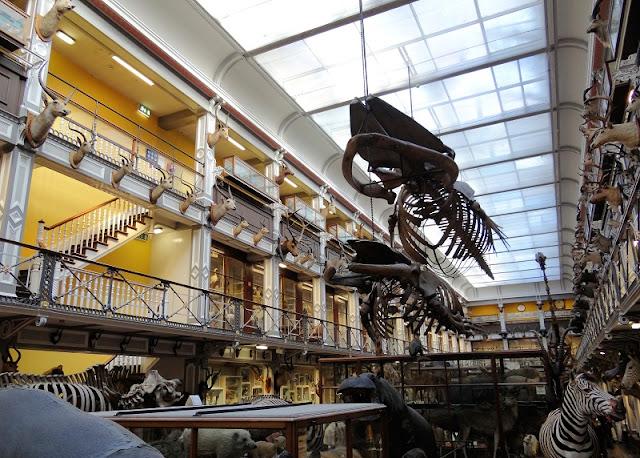 Museus em Dublin, Irlanda