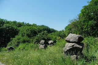 Графское. Гостинично-оздоровительный центр «Форест-Парк». Каменный сад
