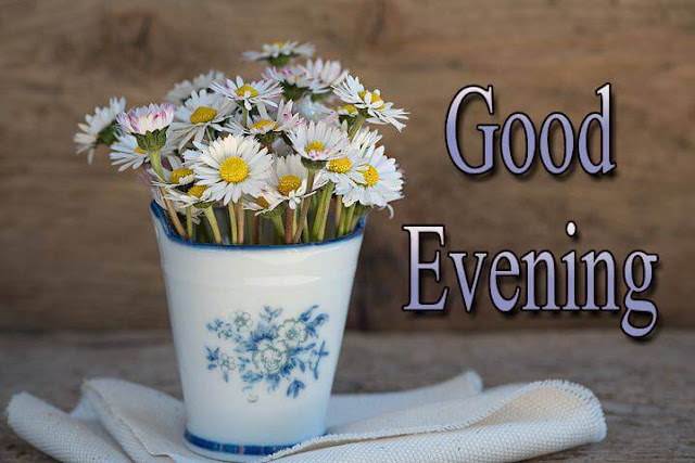 Good evening images with flower pot