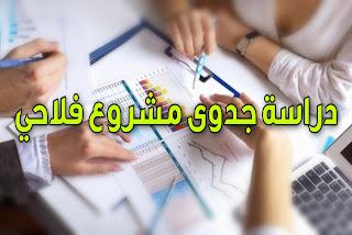 دراسة جدوى مشروع فلاحي بالمغرب جاهزة