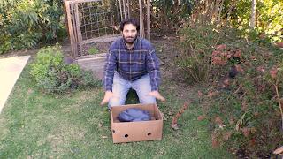 Como hacer una vermicompostera con una caja de cartón - Facil y muy accesible - 2