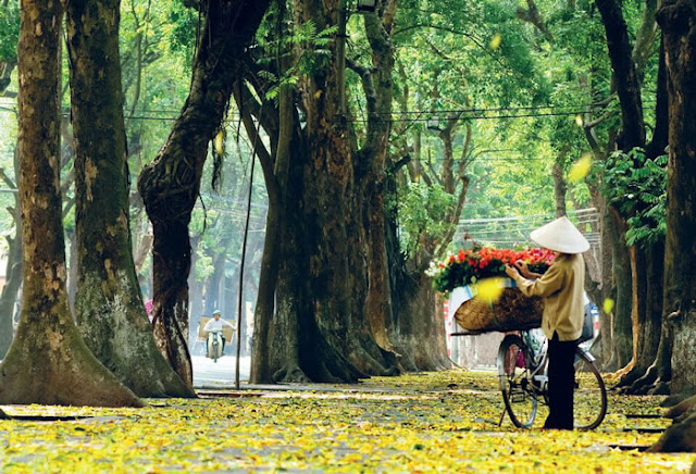 Immerse yourself in the colors of Hanoi autumn