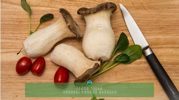 Jamur Tiram Sebagai Produk Makanan