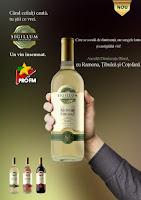 Castiga zilnic un premiu oferit de VINCON ROMANIA