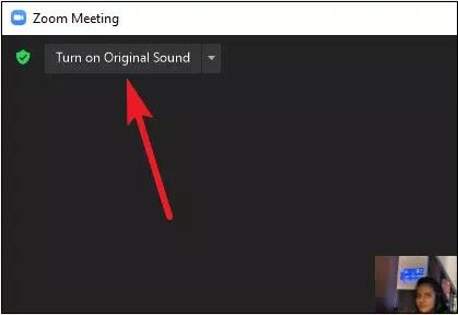 Cara Memutar Musik di Zoom-14