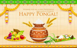 happy pongal wishes images