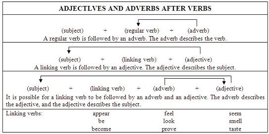 position of adverbs exercise