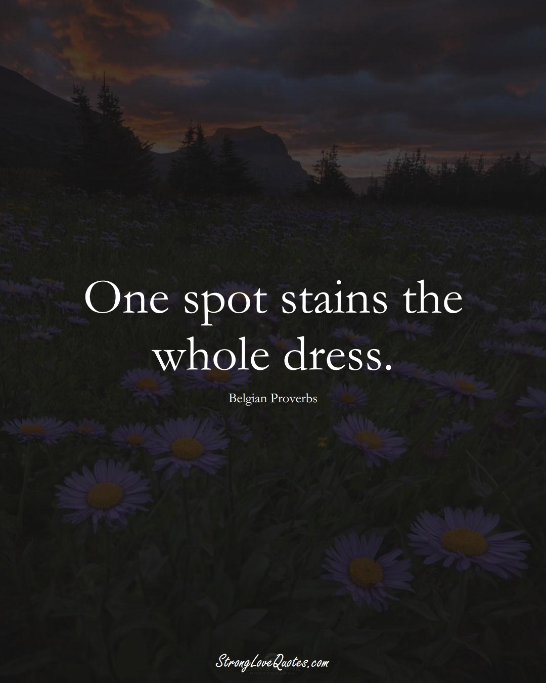 One spot stains the whole dress. (Belgian Sayings);  #EuropeanSayings