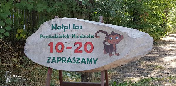 Park linowy małpi las godziny otwarcia