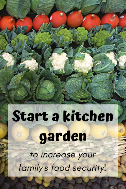 Start a kitchen garden to increase your food security!