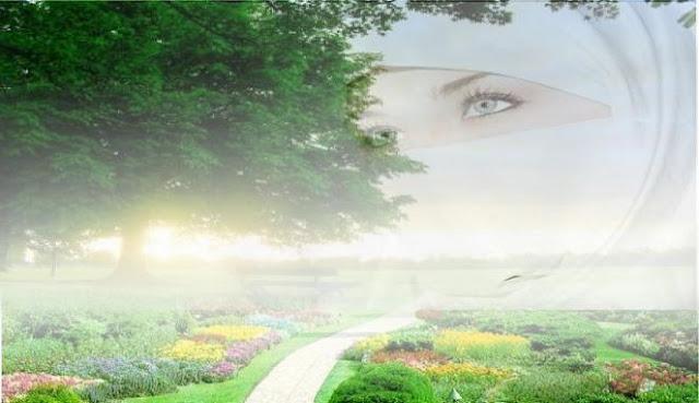 Apakah Allah SWT Tidak Adil, Jika Pria Dijanjikan Bidadari di Surga, Wanita Dapat apa?