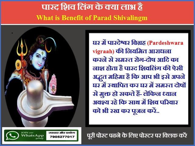 पारद शिव लिंग के क्या लाभ है-What is Benefit of Parad Shivalingm