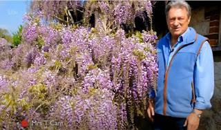 Alan Titchmarsh in his garden