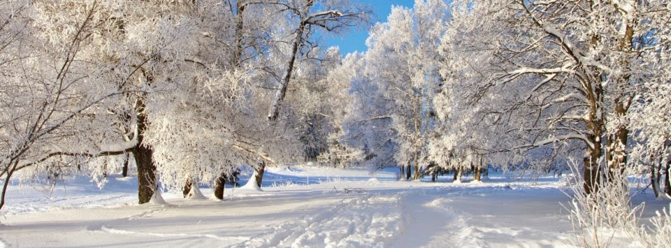 facebook titelbild natur winter