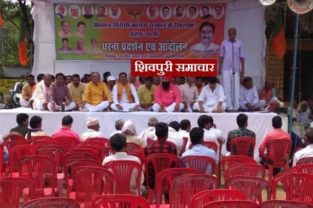 किसान आंदोलन: भाजपा का विधायक होने के बाबजूद भी नहीं भर पाई कुर्सीयां | kolaras News