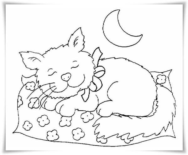 ausmalbilder zum ausdrucken: ausmalbilder katzen