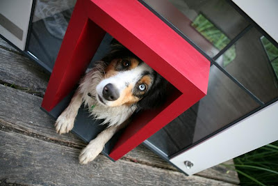 Cool and Creative Dog Mansions (15) 6