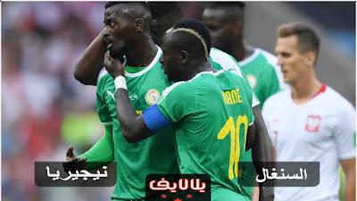 مشاهدة مباراة نيجيريا والسنغال