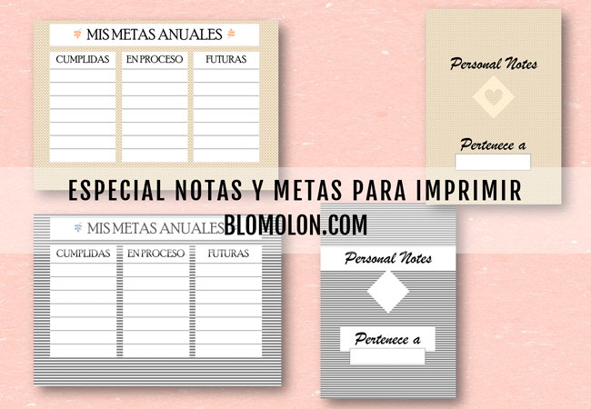 especial-notas-y-metas-para-imprimir
