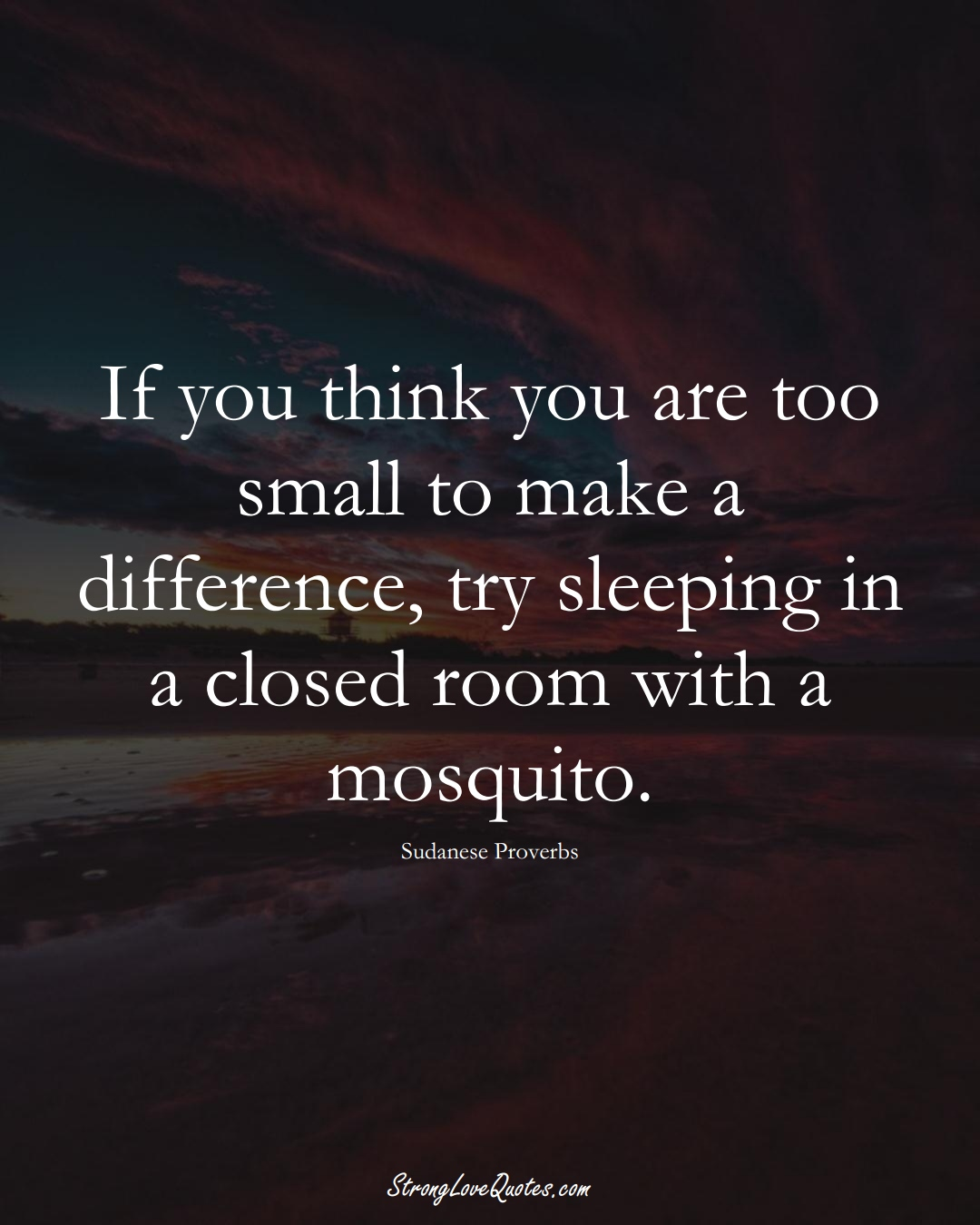 If you think you are too small to make a difference, try sleeping in a closed room with a mosquito. (Sudanese Sayings);  #AfricanSayings
