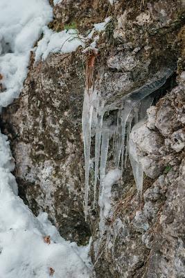 Nachtrodeln und Winterwandern in Saalfelden-Leogang  im Salzburgerland  Winterwanderung zur Einsiedelei  Nachtrodeln am Biberg 10