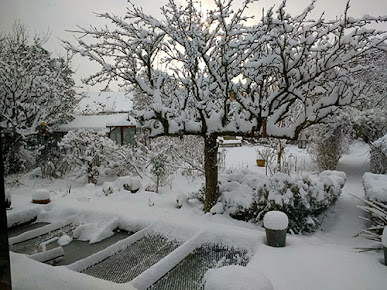 A garden and surrounding trees all covered in snow.